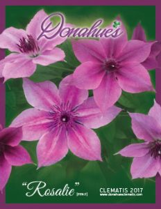 2017 Donahues Clematis Catalog