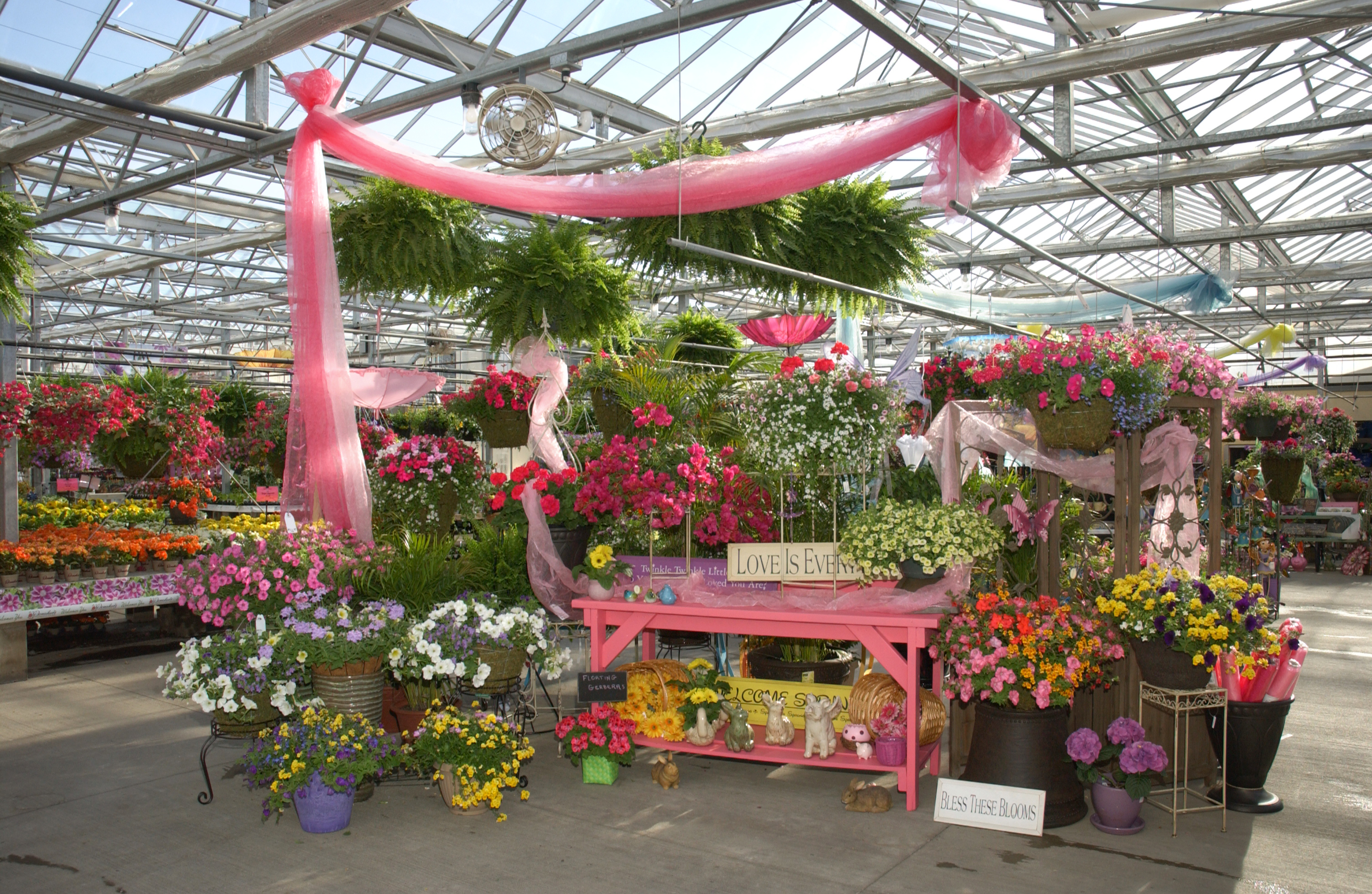 Retail Spring – Donahue's Greenhouse on grandio greenhouses, custom greenhouses, farmtek greenhouses, alaska greenhouses, low-priced greenhouses, residential greenhouses, timber greenhouses, gothic arch greenhouses,